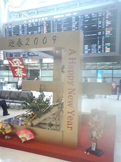 海外旅行♪