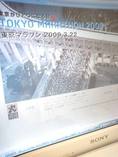東京マラソンに!!